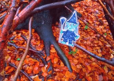Efterårstur i skoven BørneBiksen