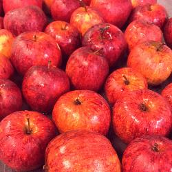 Æbler BørneBiksen